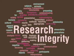 a research on the integrity of school security Ethical integrity while writing a dissertation - executing the actual research of a dissertation is a process that can pose many ethical violations such as fabricating data, falsifying data, or plagiarizing (committee, 2009).