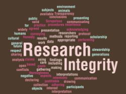 integrity 3