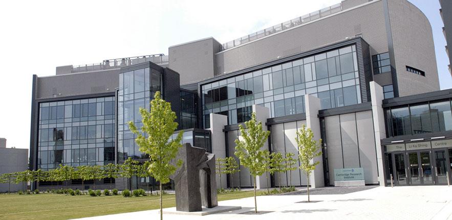 Cambridge university international strategy office