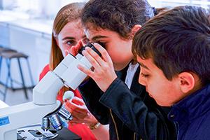 science-festival-image