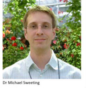 Michael Sweeting
