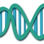 Illustration of a DNA molecule